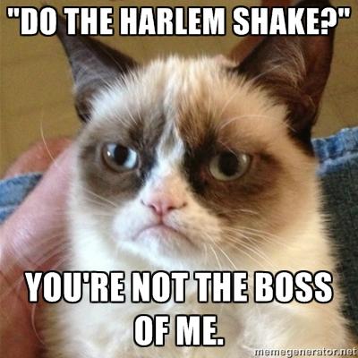 grumpy cat harlem shake
